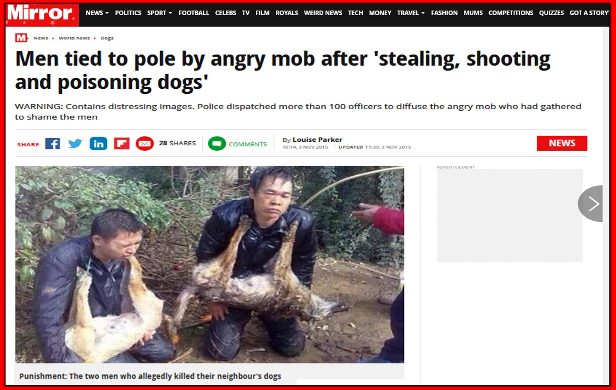 القصة الحقيقية لصين قتلا كلبين