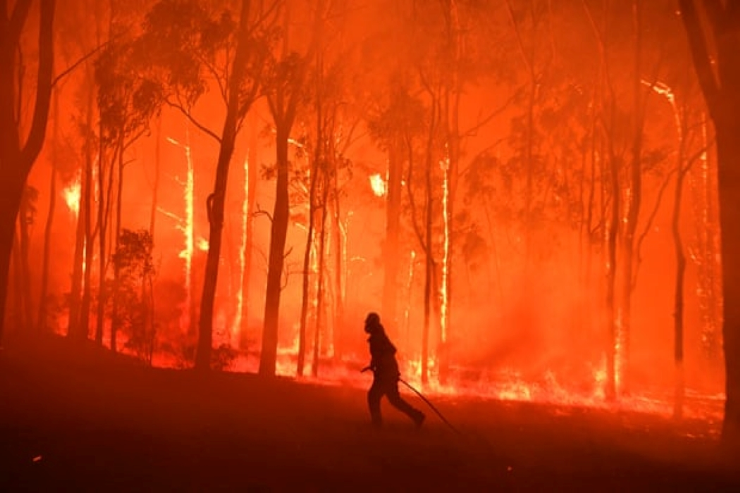حرائق الغابات في أستراليا خارج سيدني 2019.